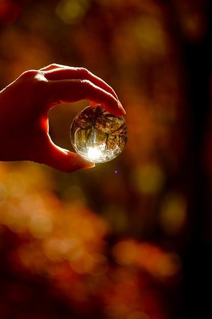 写真: ガラス玉の中へ