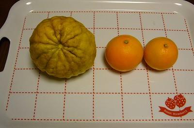 写真: 141225-5 獅子柚子とオレンジ(?)