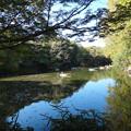 Photos: 秋の震生湖