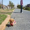 写真: 20100314 004