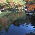 Photos: 百済寺(1) 池と紅葉