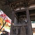 Photos: 西明寺(2) 二天門と紅葉