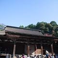 西明寺(9) 本堂