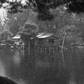 雪降る兼六園 霞ヶ池と内橋亭