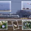 Photos: 柴山潟干拓地  特急サンダーバードと飛行機など
