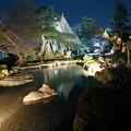 Photos: 七福神山と曲水 雁行橋
