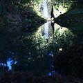 Photos: 瓢池の小さな滝