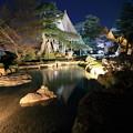 Photos: 七福神山と曲水