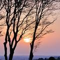 Photos: 昨日の夕陽