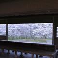 写真: 卯辰山四百年の森 東屋
