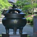 写真: 天徳院(3)