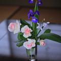 写真: バラとアヤメと口紅シラン