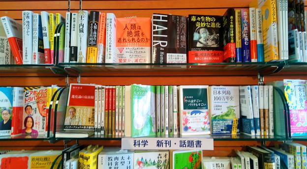 写真: くまざわ書店