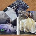 写真: パトリシアジャネコバ CD&DVD