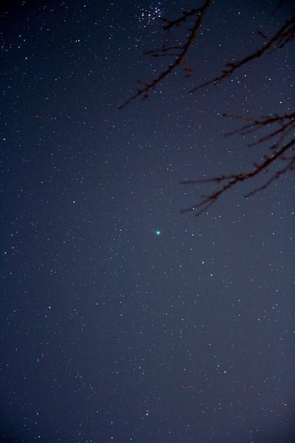 写真: ラブジョイ彗星と昴
