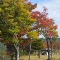 写真: 梓川サービスエリアにて   2