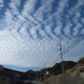 Photos: さざ波