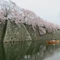 桜と石垣と小舟