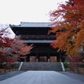 南禅寺の盛り