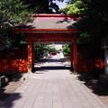 息栖神社 神門と拝殿