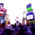 Photos: そちらどちら渋谷
