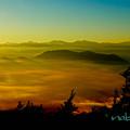 写真: 富士山五合目からの雲海