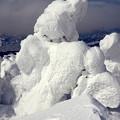 Photos: 樹氷11