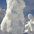 Photos: 樹氷14