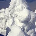 Photos: 樹氷15