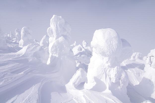 Photos: 樹氷20