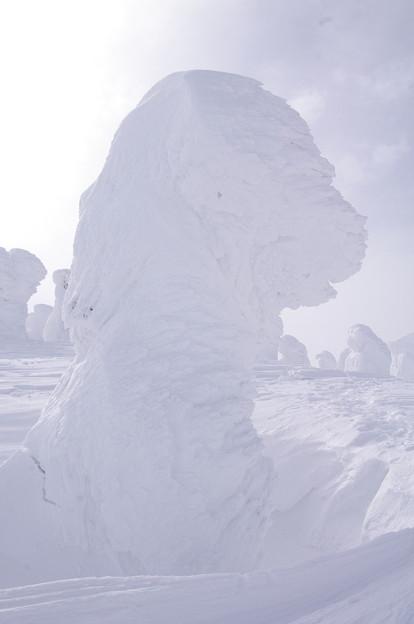 Photos: 樹氷21