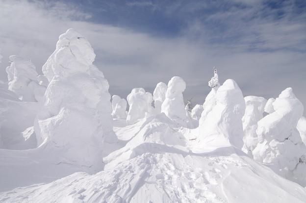 Photos: 樹氷22