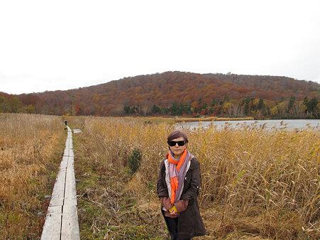 湿原紅葉1
