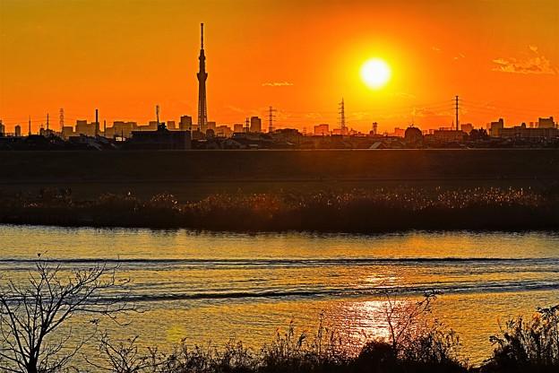 江戸川堤防からの夕景