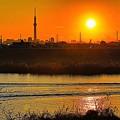 写真: 江戸川堤防からの夕景