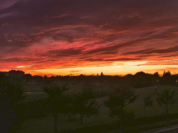 写真: 公園の夕焼け