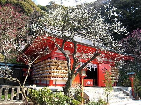 荏柄天神社(2008年3月1日)