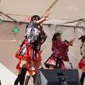 木之本七本槍祭り(KRD8)0172