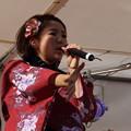 木之本七本槍祭り(KRD8)0179