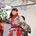 木之本七本槍祭り(KRD8)0209