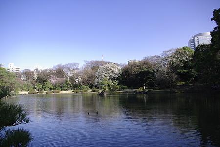 六義園の吹上茶屋近くから見た風景