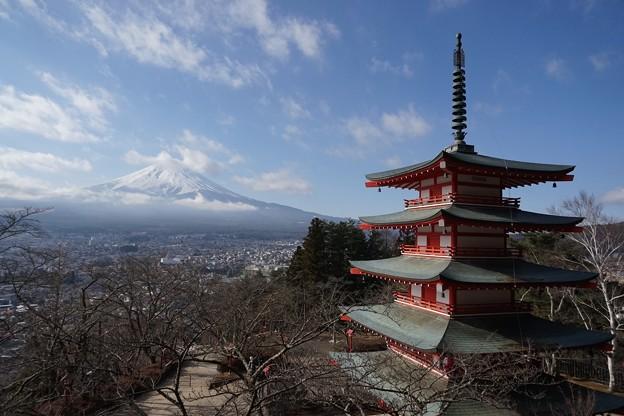 Photos: 富士山瞭望點