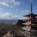 写真: 富士山瞭望點