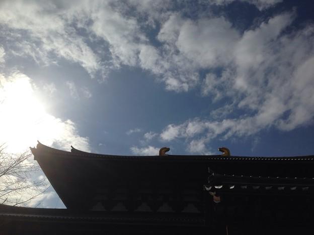 Photos: 裏大仏殿