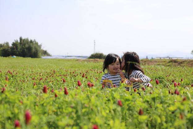Photos: ないしょの話