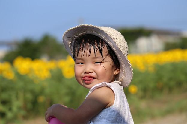 写真: ある夏の日