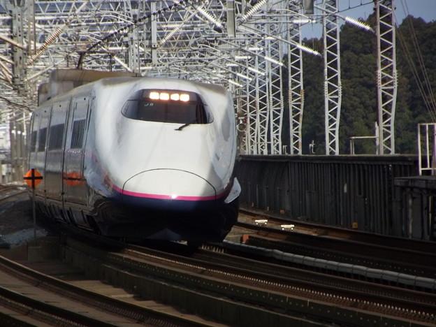 E2系J8編成  (4)