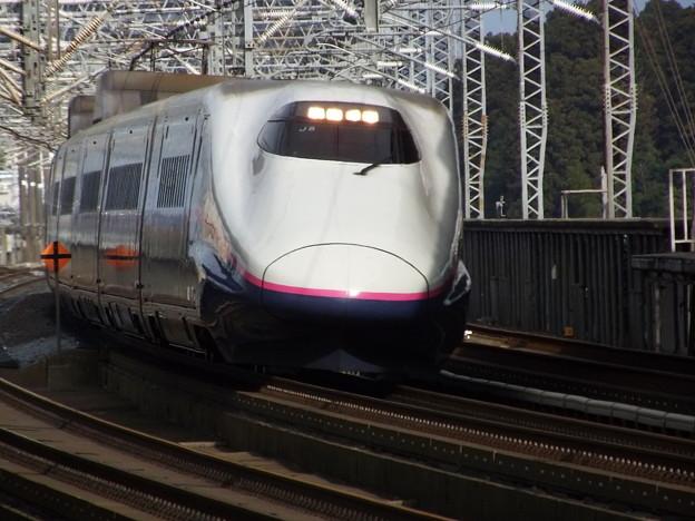 E2系J8編成  (7)