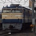 EF65 501 (2)