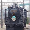 D51 498 (1)